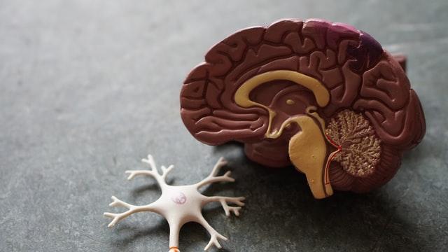 Alzheimer risk testi yapmak psikolojiyi nasıl etkiler?
