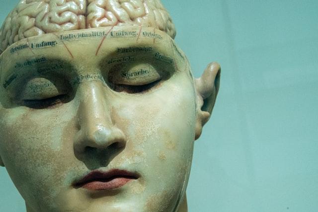 Fokal epilepsi